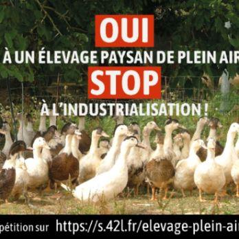 Le début de la fin de l'élevage plein air des poules et canards ...